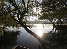 Laguna El Juncal -  Municipio de Palermo